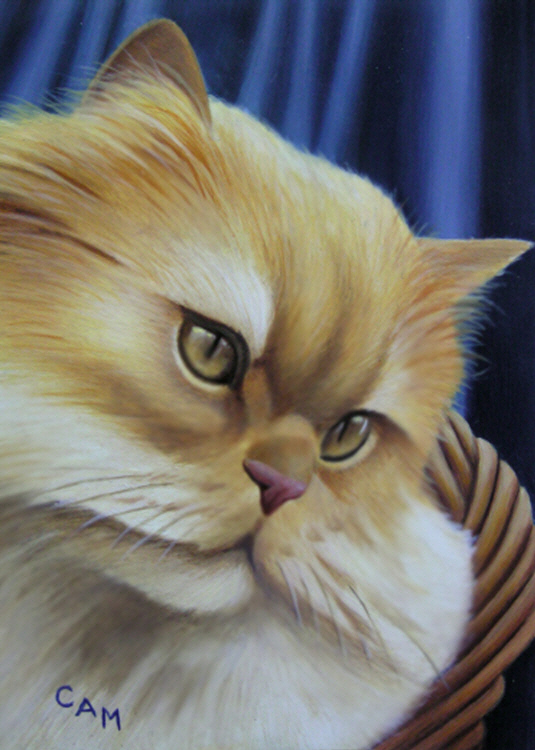 Yellow Persian
