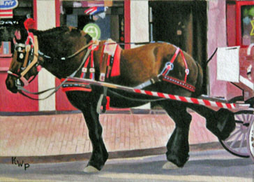 Boston Carriage Horse
